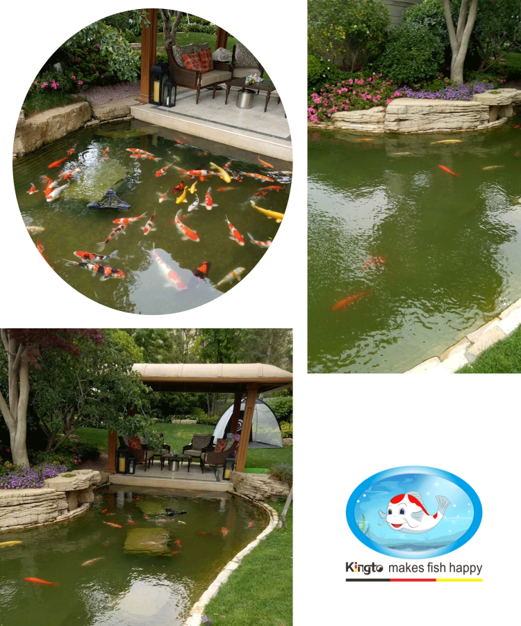 青岛别墅鱼池过滤